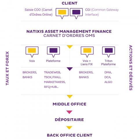 processus operationnel rto natixis namfi